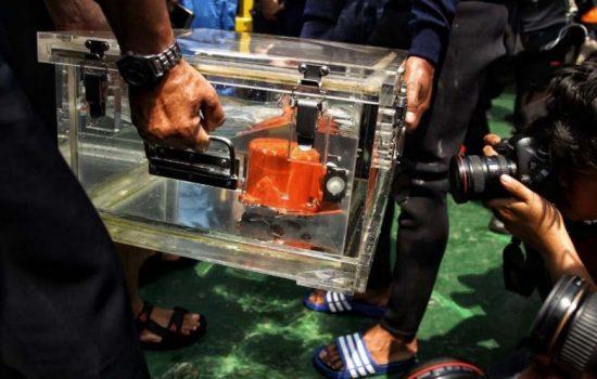 Rekaman Suara CVR Lion Air JT 610 Akhirnya Ditemukan