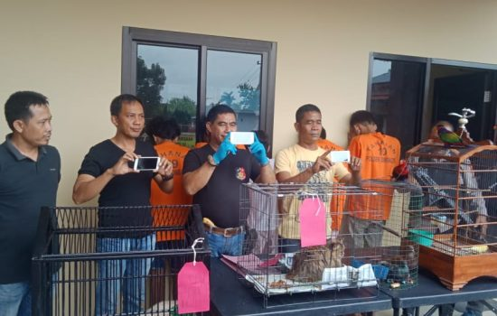 Enam Pelaku Spesialis Pencuri Burung Diringkus Polsek Somba Opu Polres Gowa