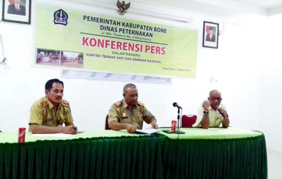 Jelang Ultah, Sapi Unggulan Berkumpul di Kampung JK