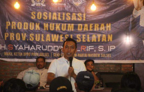 Wakil Ketua DPRD Sulsel Sosialisasi Perda Pembangunan Pemuda di Sidrap