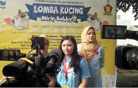 Uniknya Lomba Kucing Mirip Bobby The K4T di DPP Gerindra