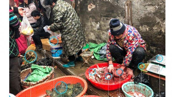 Asal Mula Wabah Virus Corona Di Wuhan China Bonepos Com