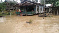 Makin Parah, Satu Jembatan Jebol Disapu Banjir