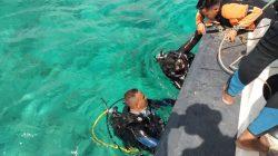 Mengejutkan, Temuan Penyelam Brimob di Teluk Bone
