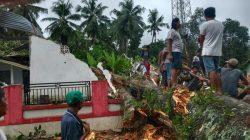 Angin Kencang, Aula Kantor Desa di Bone Ambruk Tertimpa Pohon