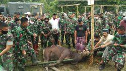 TNI Bagi-bagi Daging Kurban Kasad ke Pengungsi Banjir Luwu Utara