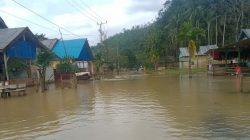 Delapan Desa di Konawe Utara Diterjang Banjir, Begini Kondisinya