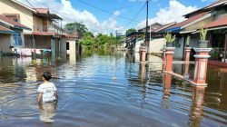 980 Rumah Diterjang Banjir di Kapuas Hulu