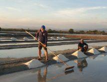 Plt Gubernur Sulsel Intens Kampanye Pakai Garam Jeneponto