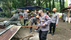 Petugas Evakuasi Pohon Tumbang di Depan Kantor DPRD Bone