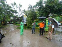 Sulsel Diterjang Hujan dan Angin Kencang, Plt Gubernur: Tetap Tenang!