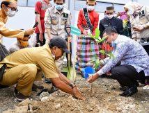 Mitigasi Bencana, Plt Gubernur Inisiasi Perda Penebangan Pohon