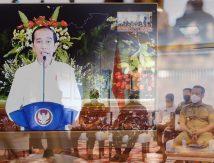 Catatan Penting Presiden Jokowi, Plt Gubernur Sulsel Atensi Khusus