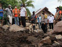 Begini Anjing Khusus Dikerahkan Cari Korban Hilang Dampak Siklon Seroja
