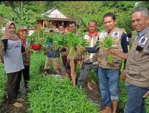 Layar Hatiku Banjir Dukungan, Petani hingga Dirjen Kementan Akui Kadis Asman
