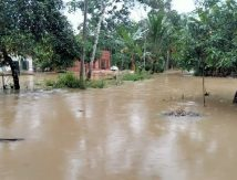 Aceh Tamiang Terendam Banjir, Segini Tingginya