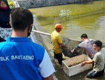 """20 Hari Dilatih, 16 Pemuda Bantaeng """"Produksi"""" Uang di Tengah Pandemi"""