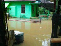 Kondisi Terbaru, Banjir Merendam Rumah Warga Kapuas Hulu di 11 Desa