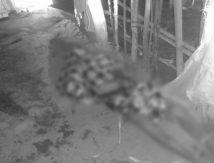 Geger! Mayat Lansia Tanpa Identitas Ditemukan di Pesisir Pantai Jeneponto