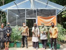 Kadis Asman Intens ke Lapangan, Sasar Daerah Rawan Pangan