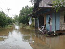 Katingan Kembali Terendam Banjir, Berikut Daerah Terdampak