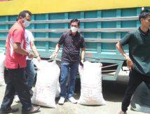 6 Ton Bantuan Benih Kacang Tanah Masuk Sinjai, Berikut Peruntukannya