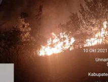 Astaga, 7 Hektare Kawasan Hutan dan Lahan Terbakar