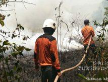 3 Hektare Lahan Terbakar, Ini Upaya Menjinakkannya
