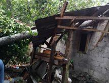Bogor Diterjang Angin Kencang, Berikut Dampaknya